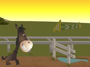 Horsey Run Run 2