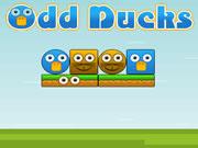Odd Ducks