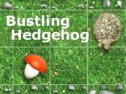 Bustling Hedgehog