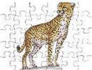 Cheetah Jigsaw
