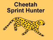 Cheetah Sprint Hunter