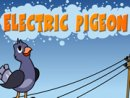 Electric Pigeon