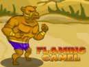 Flaming Camel