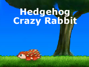 Hedgehog Crazy Rabbit