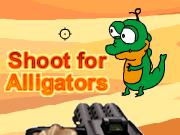 Shoot for Alligators