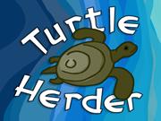 Turtle Herder
