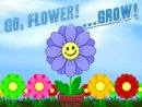 Go Flower Grow
