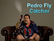 Pedro Fly Catcher