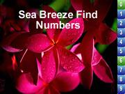 Sea Breeze Find Numbers
