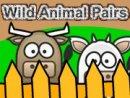 Wild Animal Pairs