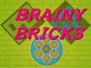 Brainy Bricks