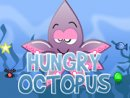 Hungry Octopus