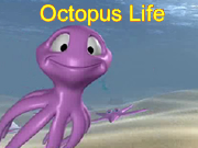 Octopus Life