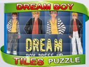 A Dream Boy Puzzle