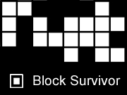 Block Survivor