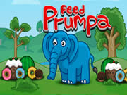 Feed Prumpa