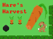 Hare's Harvest