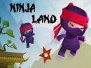 Ninja Land