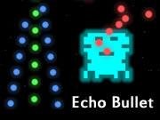Echo Bullet