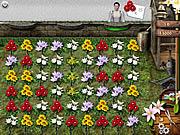 Flower Mania