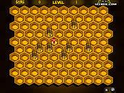 Hive Trap