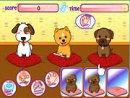 Puppies Salon