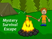 Mystery Survival Escape