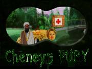 Cheney's Fury
