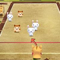 cat-bowling-2.jpg