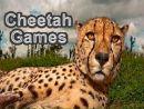 Cheetah Games