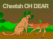 Cheetah OH DEAR