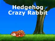 Hedgehog Crazy Rabbit