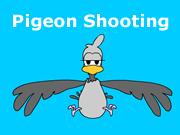 Pigeon Shooting