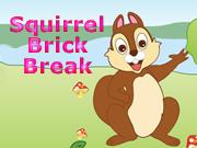 Squirrel Brick Break