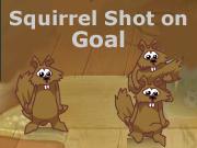 Squirrel Shot on Goal