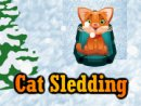 Cat Sledding