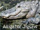 Alligator Jigsaw