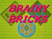 Brainy Bricks