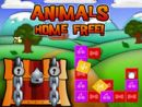 Animals - Home Free