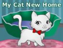 My Cat New Home
