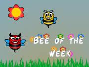 Bee Of The Weeks