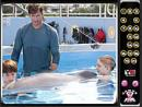Hidden Numbers-Dolphin Tale