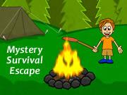 Mystery Survival Escape