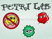 Petri-Lab